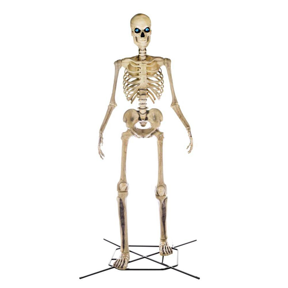 Halloween 2020 Lowes Levittown Home Accents Holiday 12 ft. Giant Sized Skeleton with LifeEyes