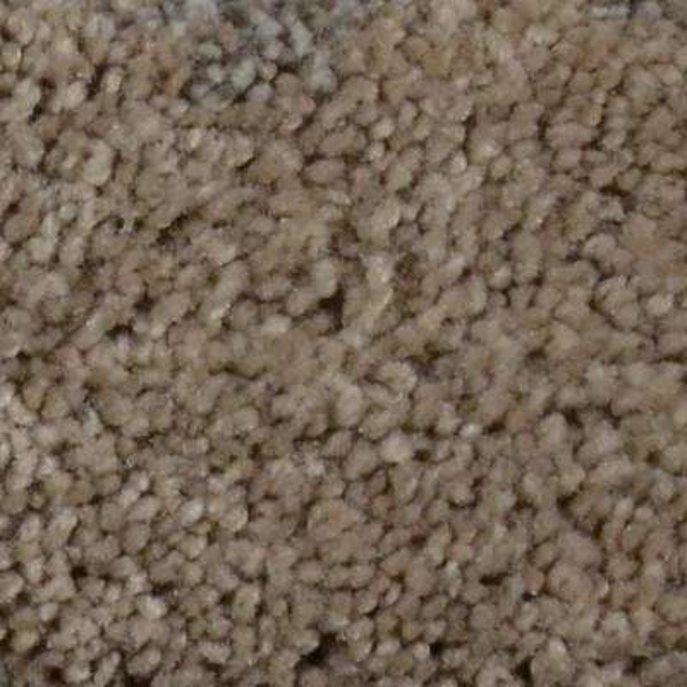 Carpet Sample - Harvest III - Color Barnhart Texture 8 in. x 8 in.