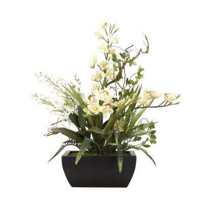 Indoor Light Yellow Cymbidium Orchids and White Baby Dendrobiums in Square Metal Planter
