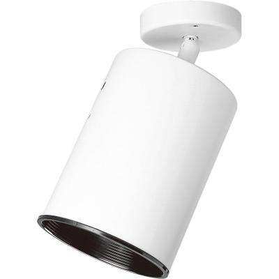 White 1-Light Spotlight Fixture