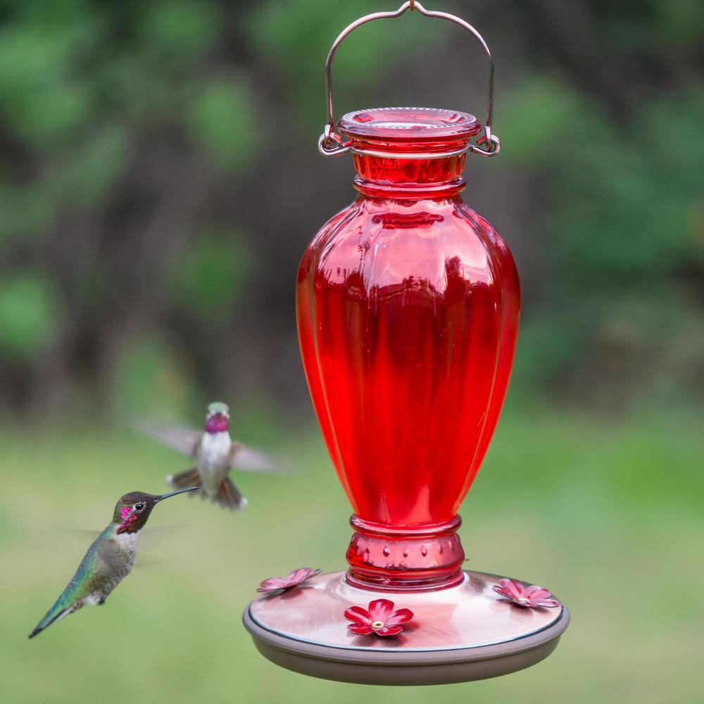Red Daisy Vase Decorative Glass Hummingbird Feeder - 24 oz. Capacity