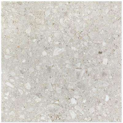 Rizzo Light Gray 24 in. x 24 in. x 9mm Semi Polished Porcelain Floor and Wall Tile (3 pieces / 11.62 sq. ft. / box)