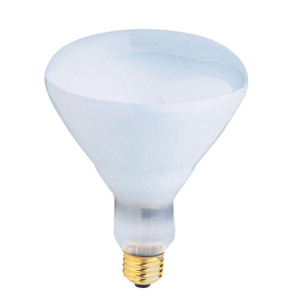 400-Watt Incandescent R40 Pool and Spa Flood Light Bulb (24-Pack)