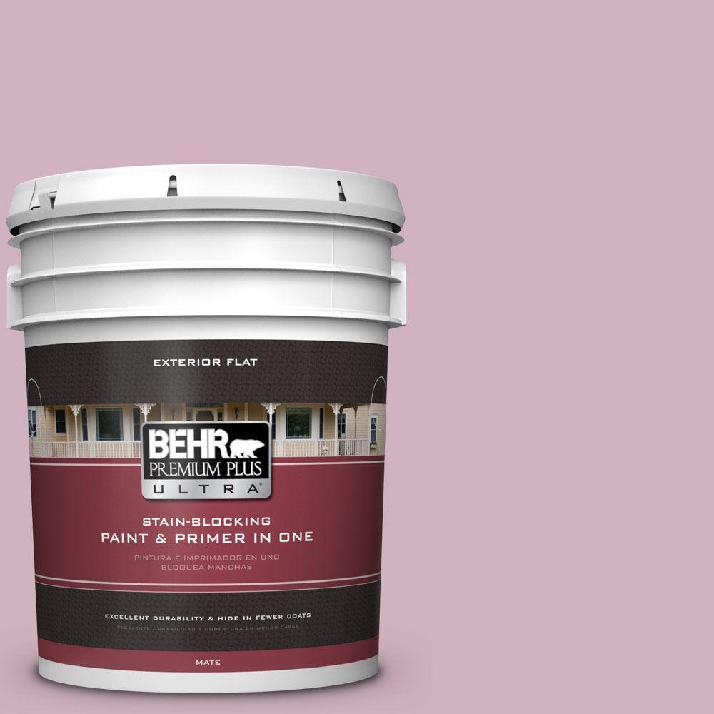BEHR Premium Plus Ultra 5-gal. #S120-3 Candlelight Dinner Flat Exterior Paint