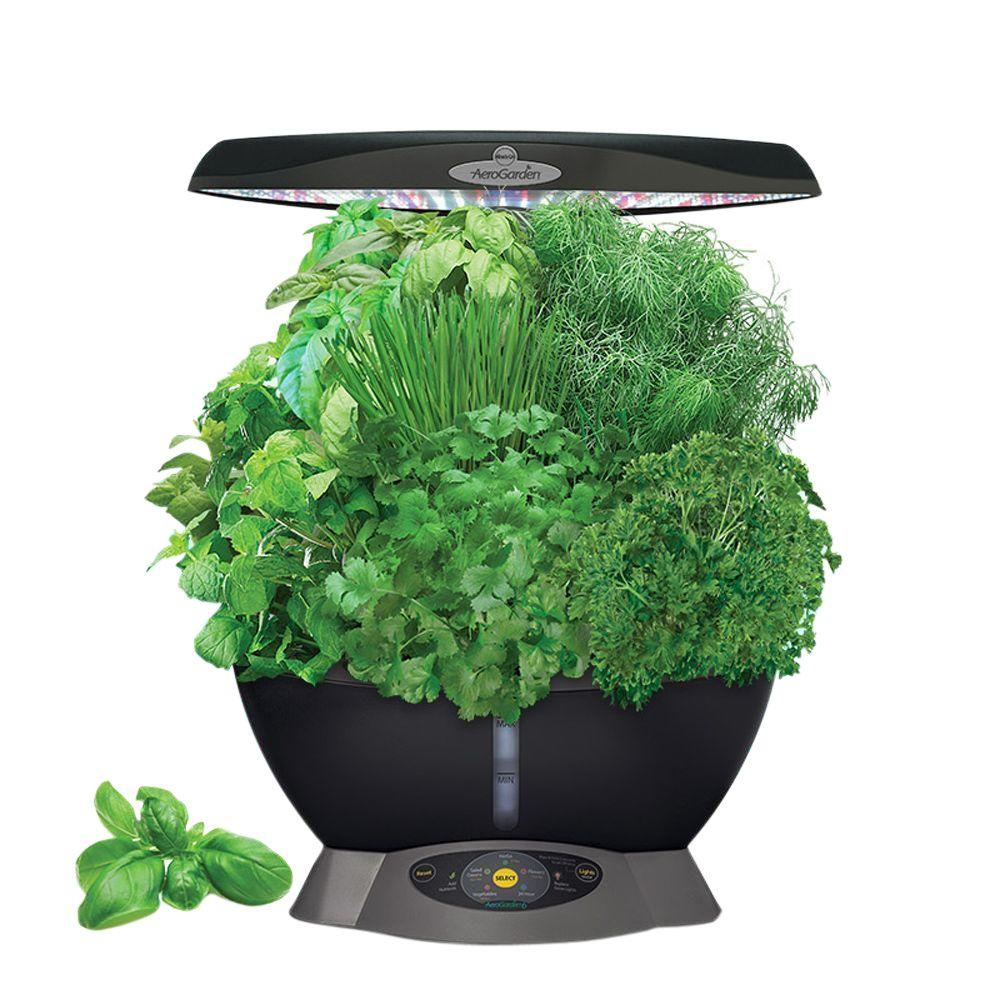 Miracle Gro Aerogarden Classic 6 With Gourmet Herb Seed Pod Kit 901016 1100 The Home Depot