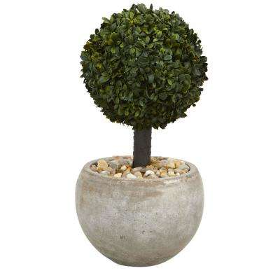 2 ft. High Indoor/Outdoor Boxwood Topiary Artificial Tree in Sand Bowl