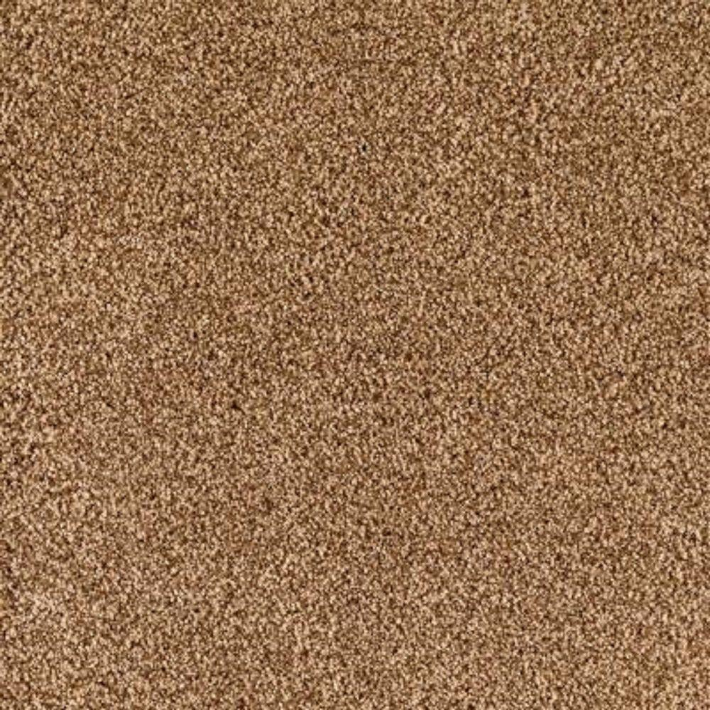 Carpet Sample - Lavish II - Color Baked Scone Texture 8