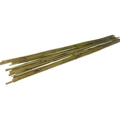 Bamboo Stakes in Natural Color (100-Pack)