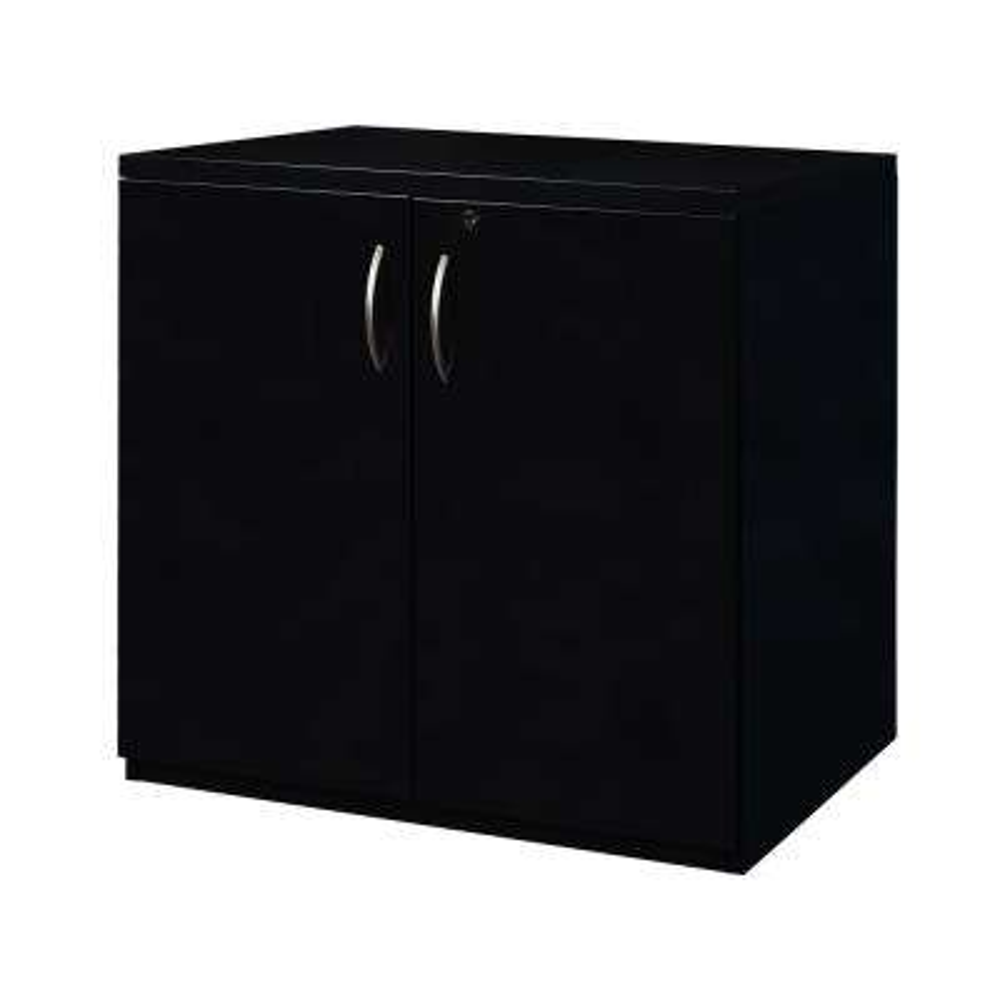 Fusion Black 28 in. x 36 in. Storage Cabinet