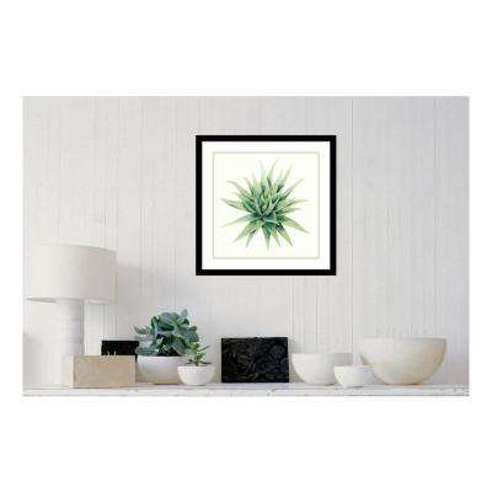 "21 in. H x 21 in. W ""Tropical Plant III"" by "" Grace Popp"" Framed Print Wall Art"