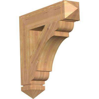 5.5 in. x 28 in. x 28 in. Western Red Cedar Olympic Arts and Crafts Smooth Bracket