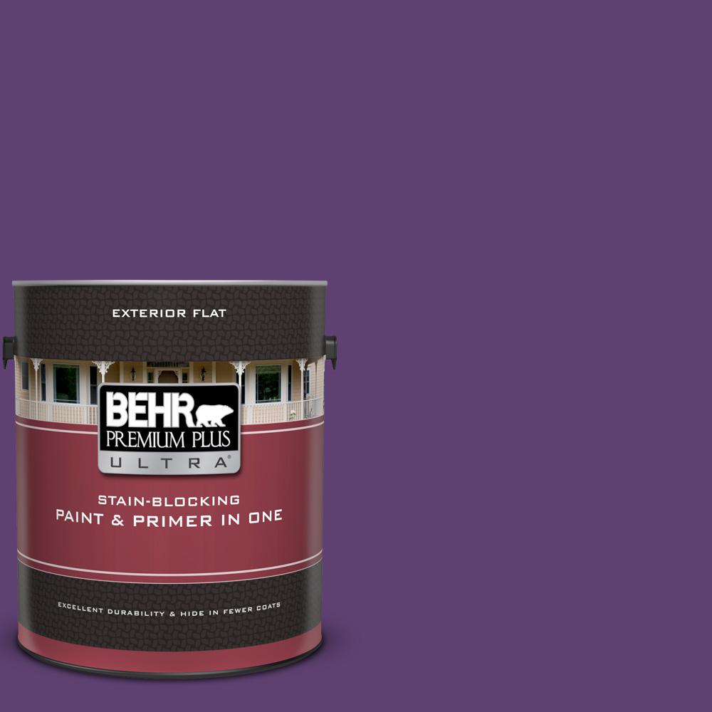 S G 670 Deep Violet Flat Exterior Paint
