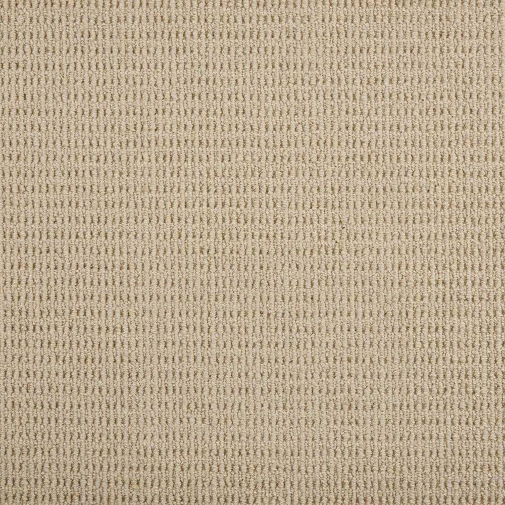 Carpet Sample - Terrain - Color Eggshell Loop 8 in. x 8 in.
