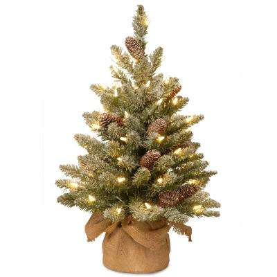 24 in. Snowy Concolor Fir Tree with Battery Operated LED Lights