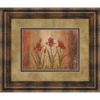 """34 in. x 40 in. """"The Iris Style"""" by Vivian Flasch Framed Printed Wall Art"""