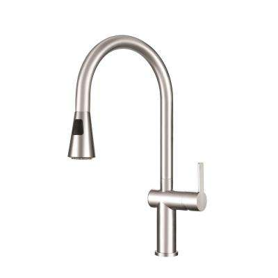 Bern Single-Handle Pull-Down Sprayer Kitchen Faucet with Fast-In Quick Install System in Stainless Steel