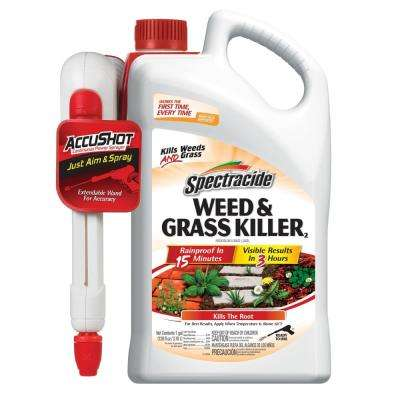 Weed and Grass Killer 1 gal. AccuShot Sprayer