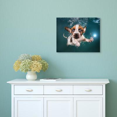 """""""Jack Russell"""" Unframed Free Floating Tempered Glass Panel Graphic Dog Wall Art"""