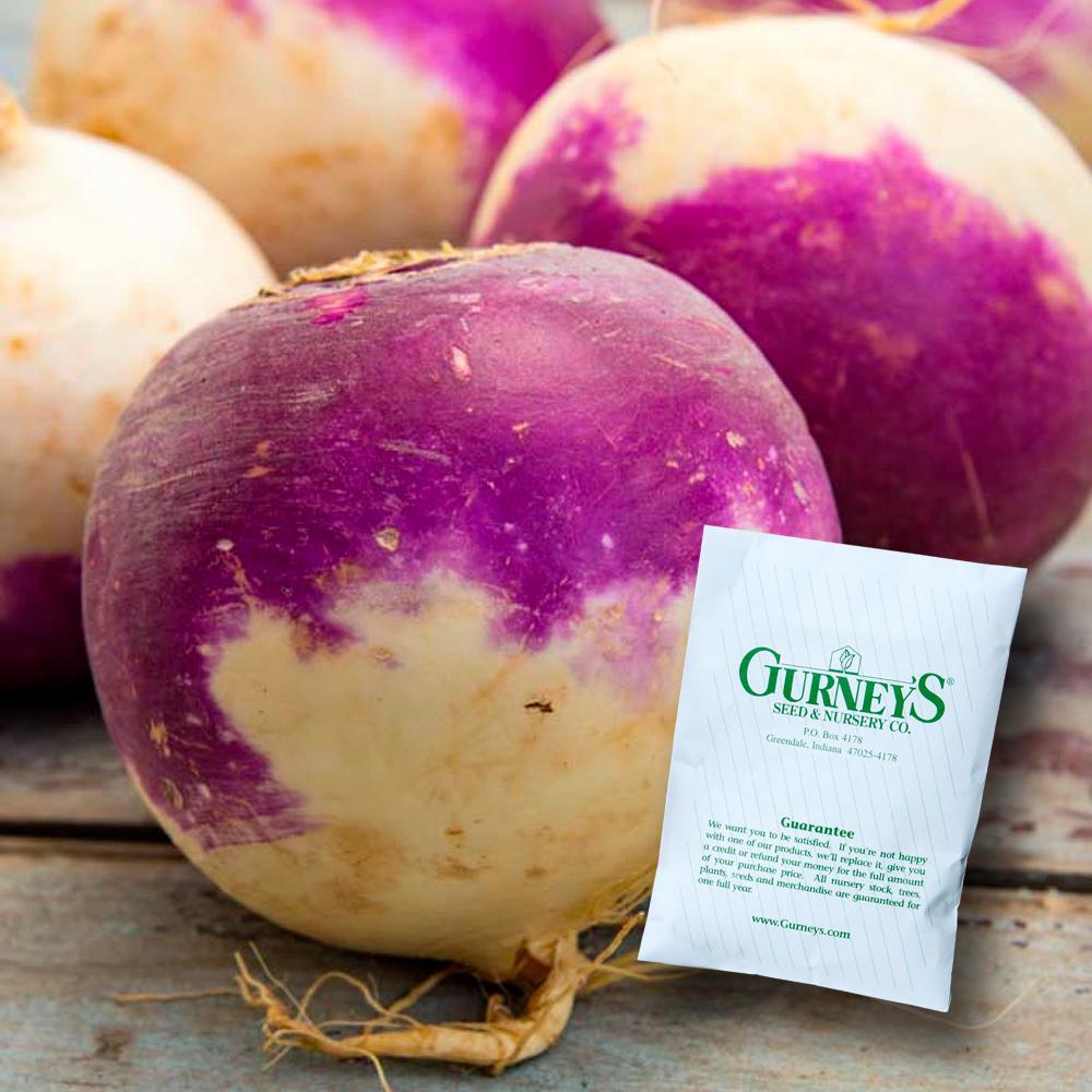 Rutabaga Laurentian Seed (600-Pack)