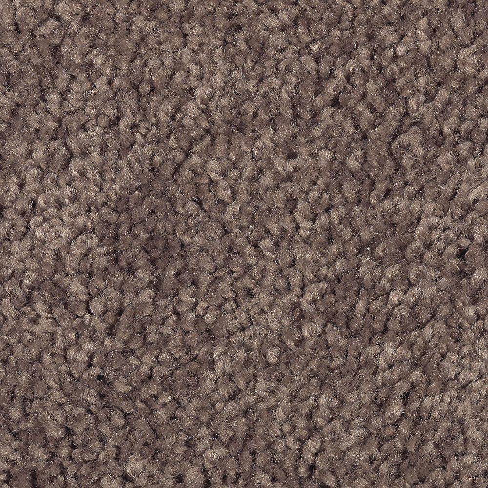 Carpet Sample - Astoria - Color Pecan Texture 8 in. x 8 in.