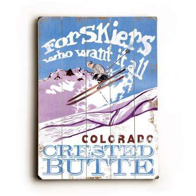 """12 in. x 16 in. """"For skiers who want it all"""" by Posters Please """"Planked Wood"""" Wall Art"""