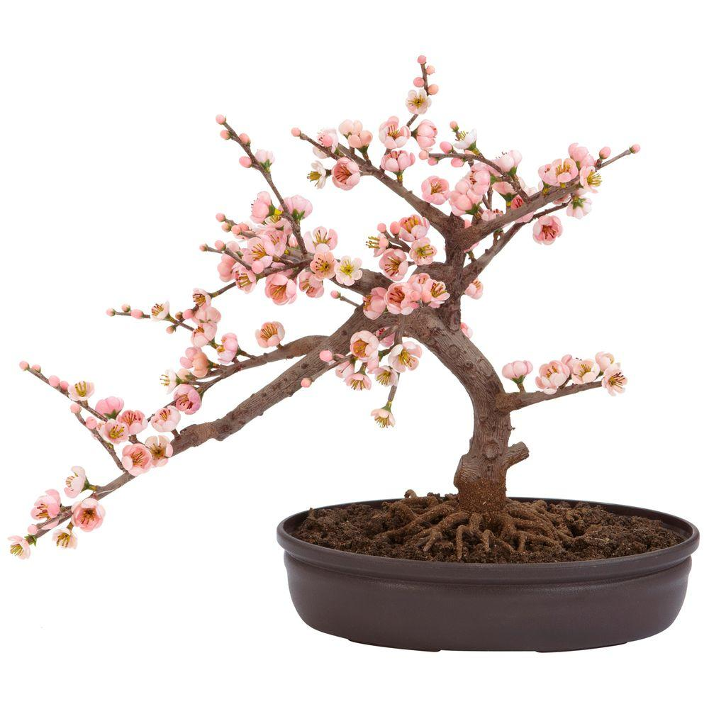 Nearly Natural 15 in. H Pink Artificial Cherry Blossom Bonsai Silk Tree A truly beautiful specimen symbolizing the botanical beauty of Japan (and other parts of the world as well). Staying low to the ground at 15 in., this Cherry Blossom Bonsai is perfect for those seeking elegance and tranquility. The varied pastel colors bring a sense of peace to all who behold its splendor, and since its maintenance free in its own decorative pot, you never have to worry about the painstaking upkeep needed with other bonsai. Silk plants are manufactured using synthetic materials, such as polyester material or plastic, and are well designed and constructed to be life-like in appearance. This item will need to be re-shaped when removed from the secure box to allow it to reach its fullest size. Your artificial plant will look beautiful for years to come; simply wipe clean with a soft dry cloth when needed.