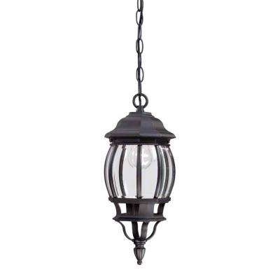 1-Light Black Outdoor Hanging Lantern