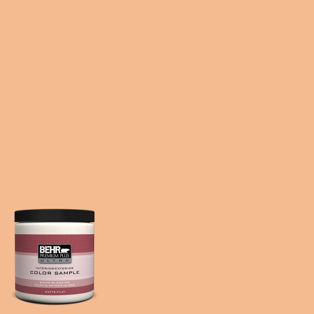 BEHR Premium Plus Ultra 8 oz. #270D-4 Brandy Butter Interior/Exterior Paint Sample