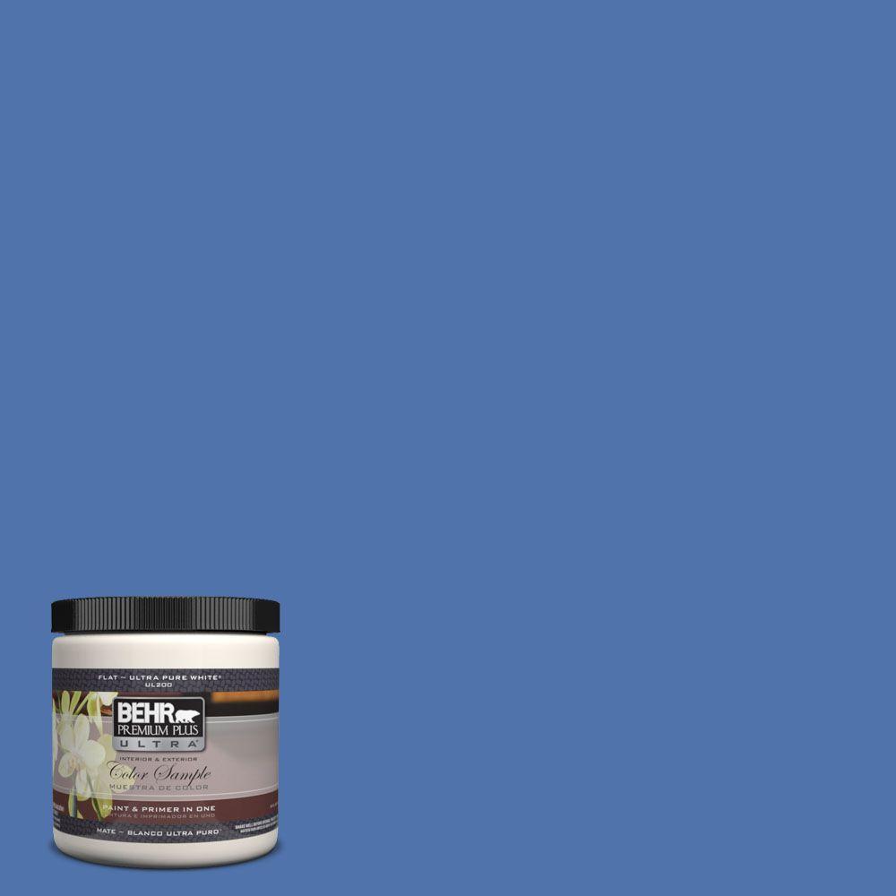 BEHR Premium Plus Ultra 8 oz. #590B-6 Flying Fish Interior/Exterior Paint Sample