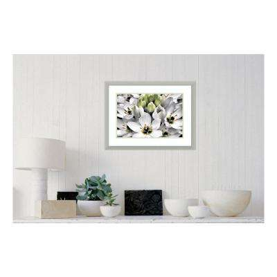 24.63 in. W x 18.63 in. H Blooming Stars by Dennis Frates Printed Framed Wall Art