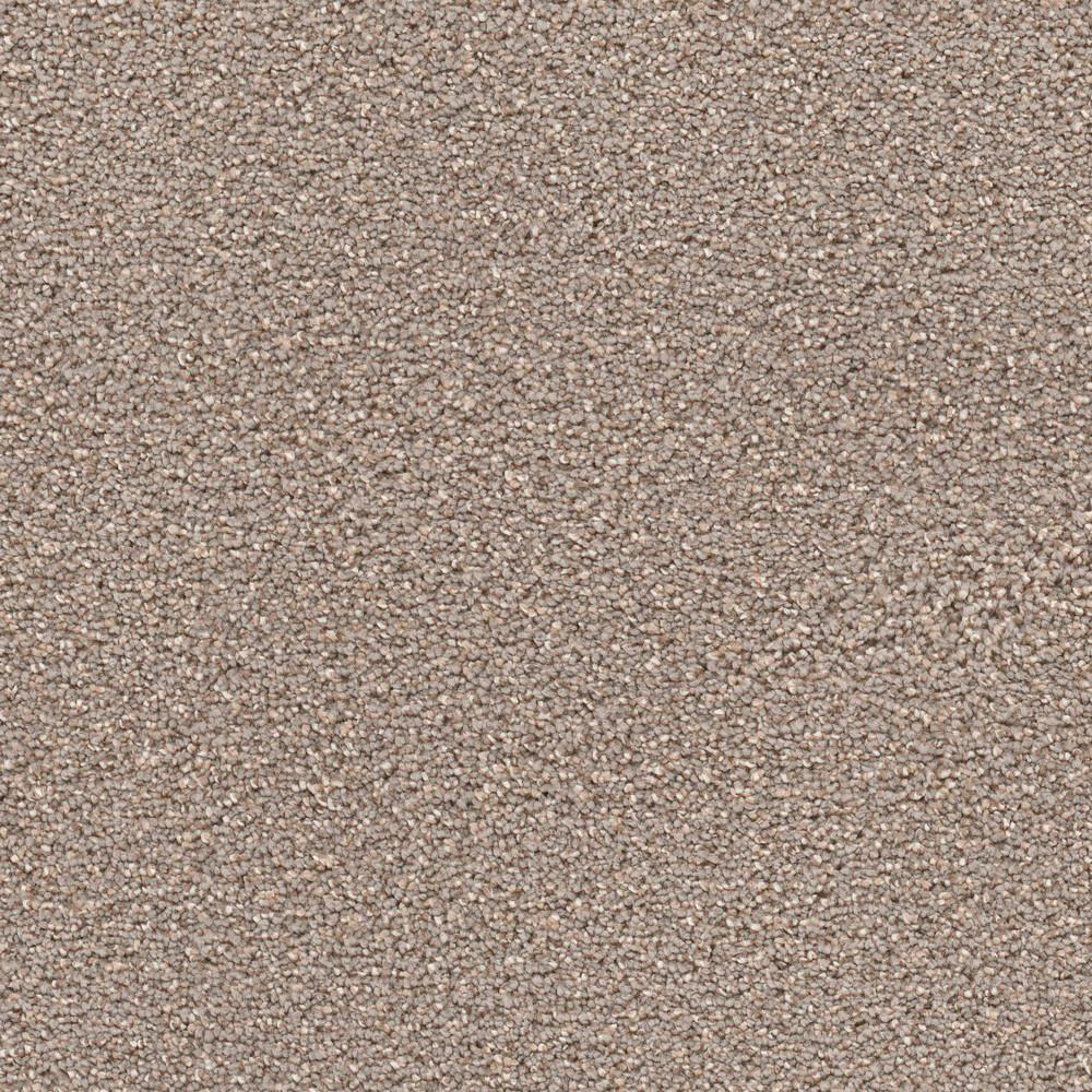 Carpet Sample - Elite II - Color Grant Texture 8 in. x 8 in.