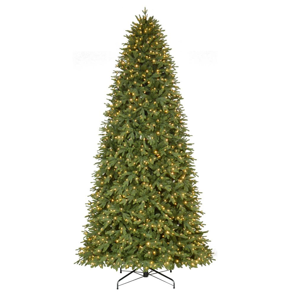 home accents holiday 12 ft pre lit led monterey fir artificial christmas tree with - 12 Ft Artificial Christmas Trees