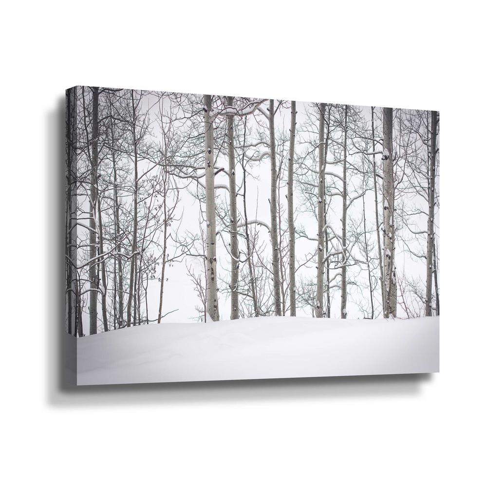 ArtWall Behind the cloister doors' by Eunika rogers Canvas Wall Art, White This beautiful gallery wrapped canvas art is the perfect piece of wall decor for that bare wall. Display this gorgeous wall art decor in the living area with some brushed nickel sconces. Hang this artwork in the dining area for a wonderful conversation piece. Color: White.