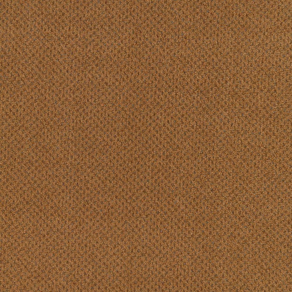 Market Share - Color Cottage Clay 12 ft. Carpet