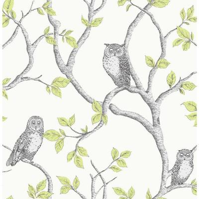 56.4 sq. ft. Linden Green Owl Wallpaper