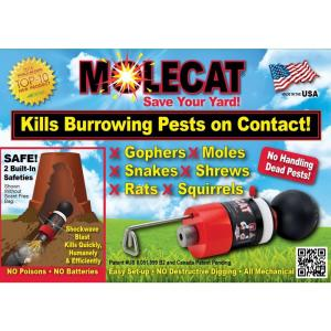 Click here to buy MOLECAT Professional Grade Pest Exterminator by MOLECAT.