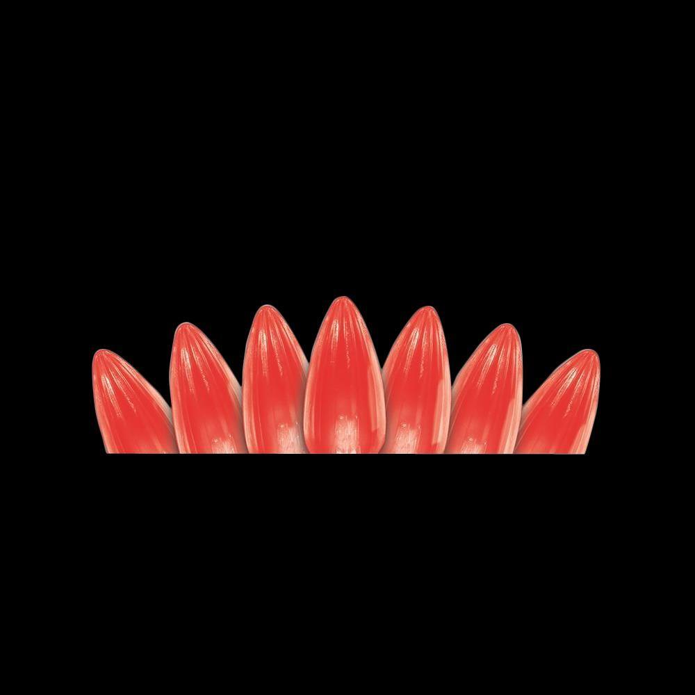 Martha Stewart Living 50-Light LED C3 Crystal Red Light Set