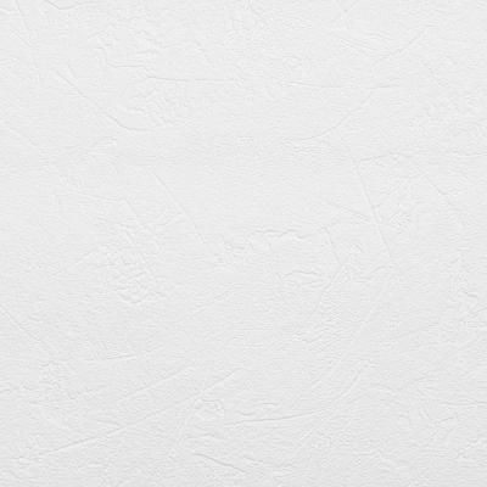 56.4 sq. ft. Brier Paintable Plaster Texture Wallpaper