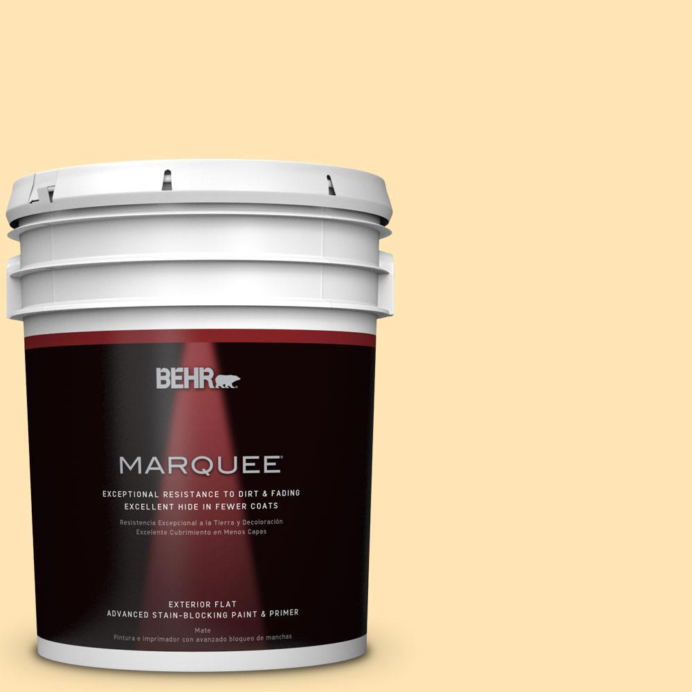 BEHR MARQUEE 5-gal. #P260-3 Vanilla Ice Cream Flat Exterior Paint