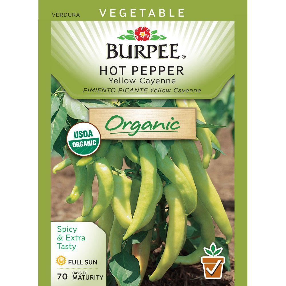 Pepper Organic Yellow Cayenne Seed