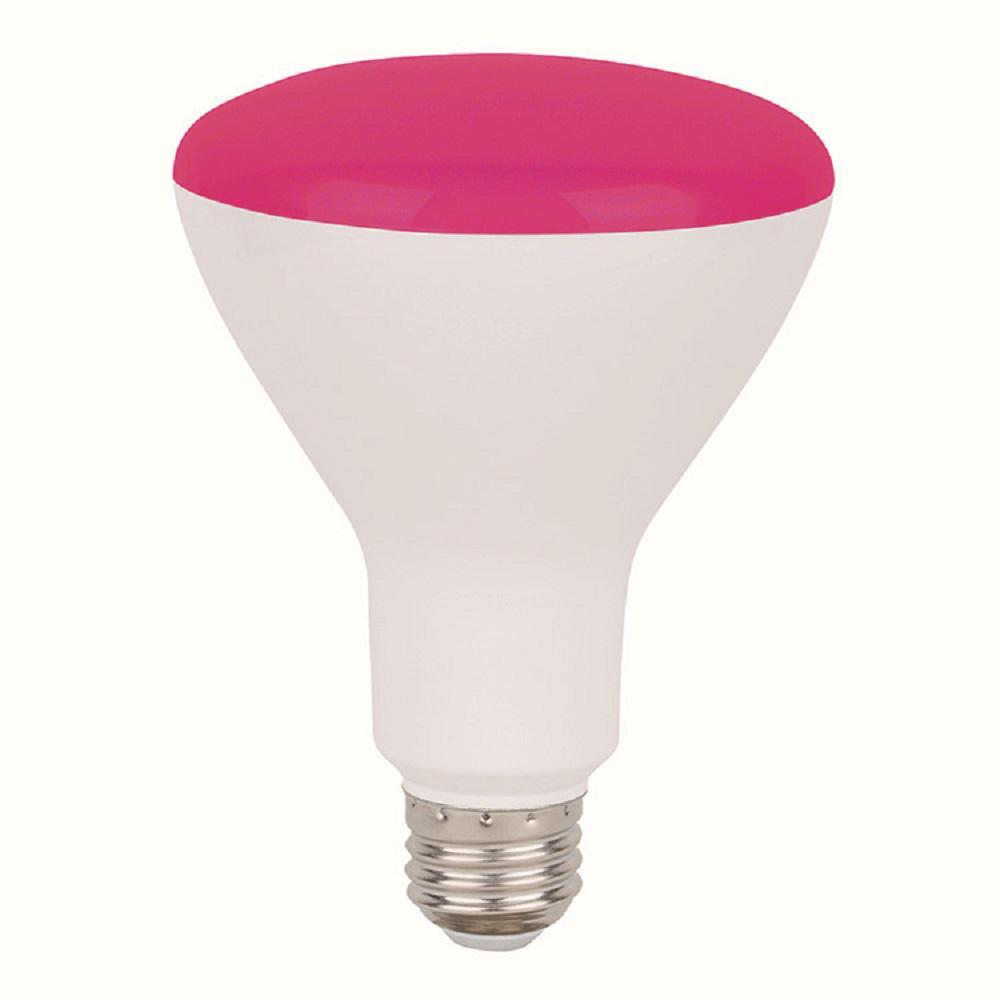 Elegant Lighting 40w Equivalent Soft White E26 Dimmable: 50W Equivalent Warm White E26 Dimmable LED Light Bulb