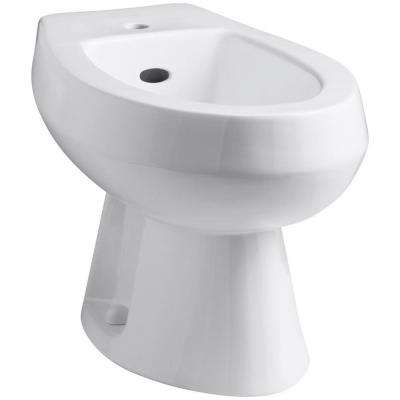 Amaretto Elongated Bidet in White
