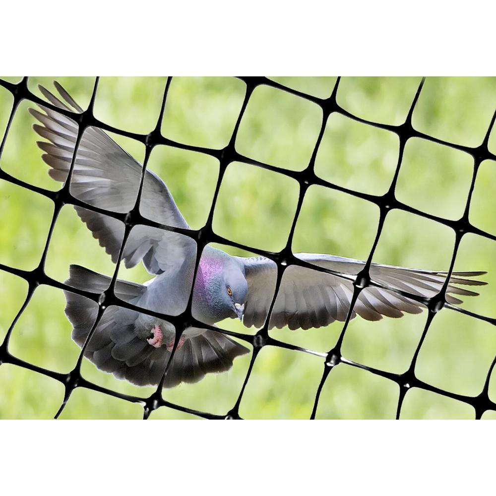 Bird X 100 Ft X 14 Ft Standard Bird Netting Net Std 100