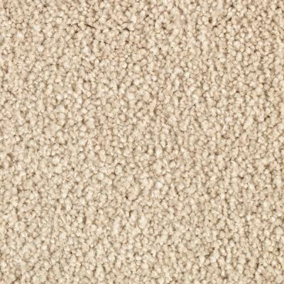 Cashmere III - Color Cultured Pearl Texture 12 ft. Carpet