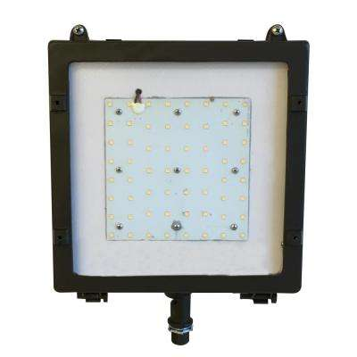 Typhoon 50-Watt Bronze Outdoor Integrated LED Flood Light with Integrated Photocell Dimming Surge Protector Slip Fitter