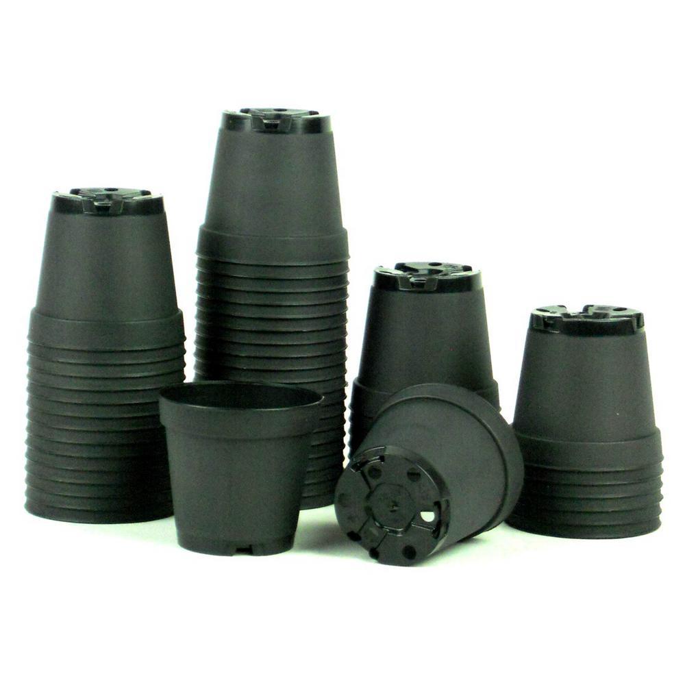 2 in. Dia Black Plastic Pot (50-Pack)