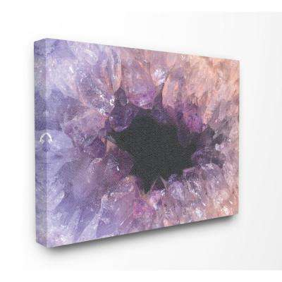 "30 in. x 40 in. ""Amethyst Geode Cavern Photograph"" by Daphne Polselli Canvas Wall Art"