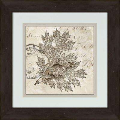 """17 in. x 17 in. """"Sophisticated Botany A"""" Framed Wall Art"""