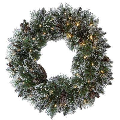 24 in. LED Pre-Lit Glittery Bristle Pine Artificial Christmas Wreath
