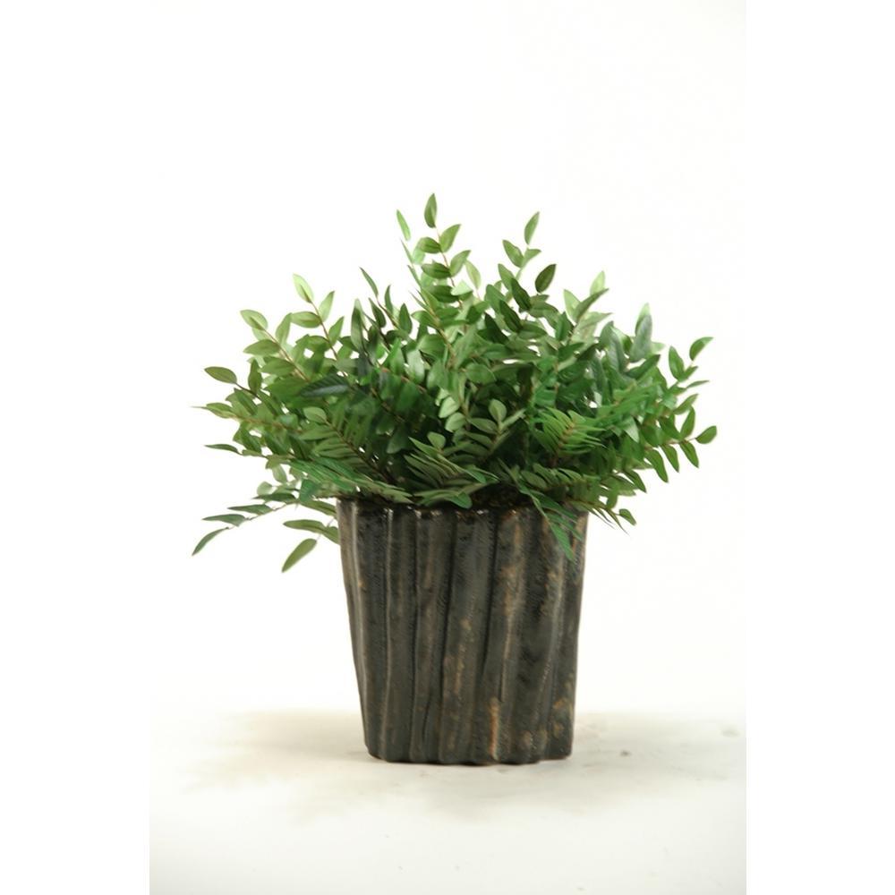 Indoor Green Locust Spray in Oval Ceramic Planter